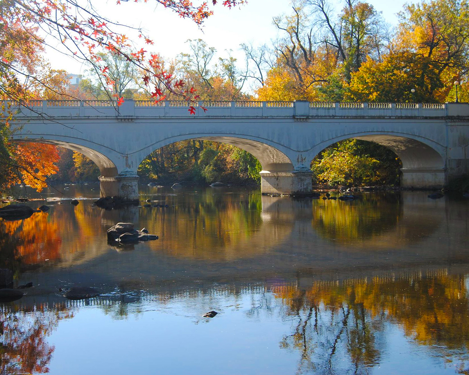 Pam Cottrell - Reflections - Brandywine River - Wilmington, Delaware
