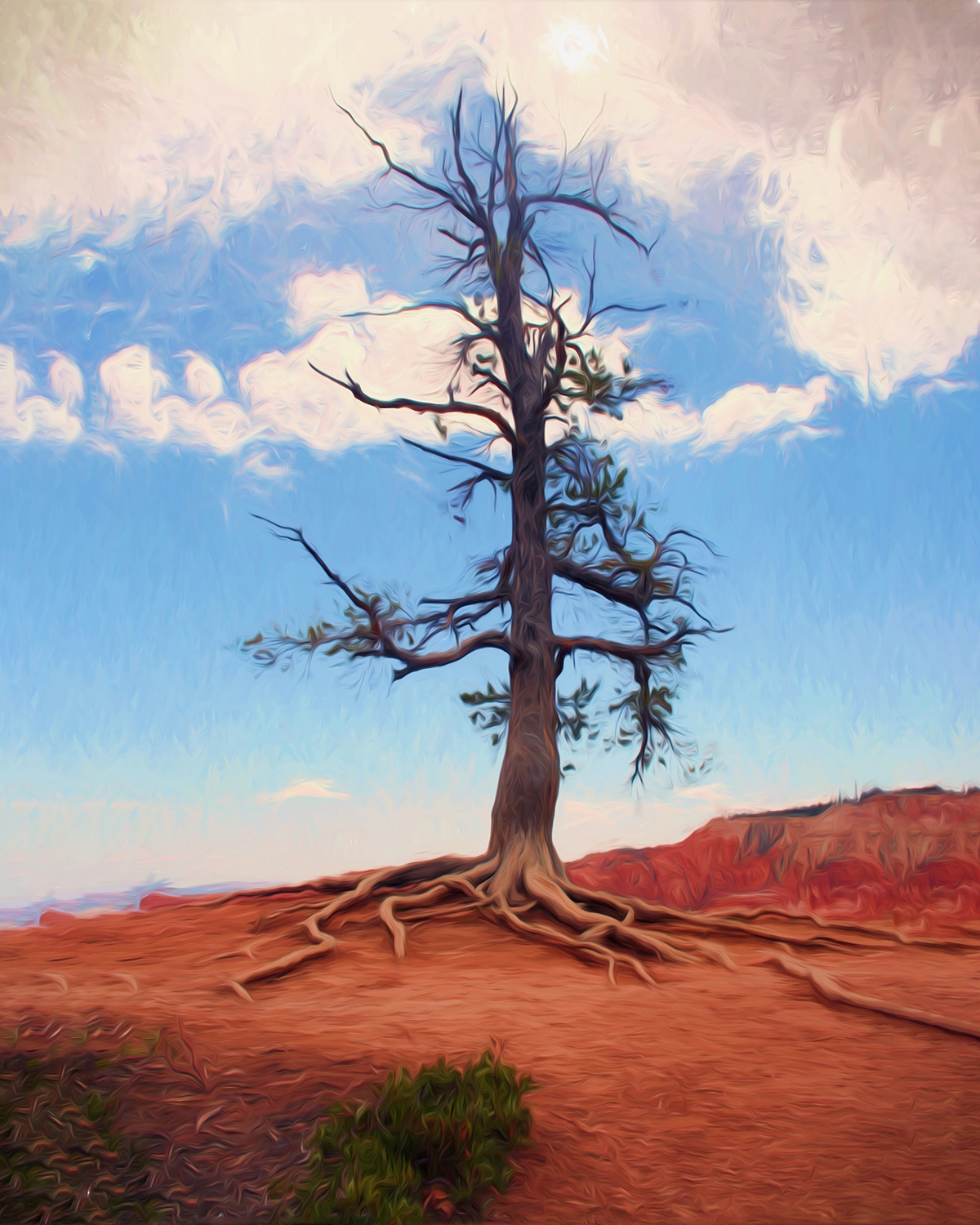 Patrick Fleury - Lone Tree at Bryce Canyon, Utah
