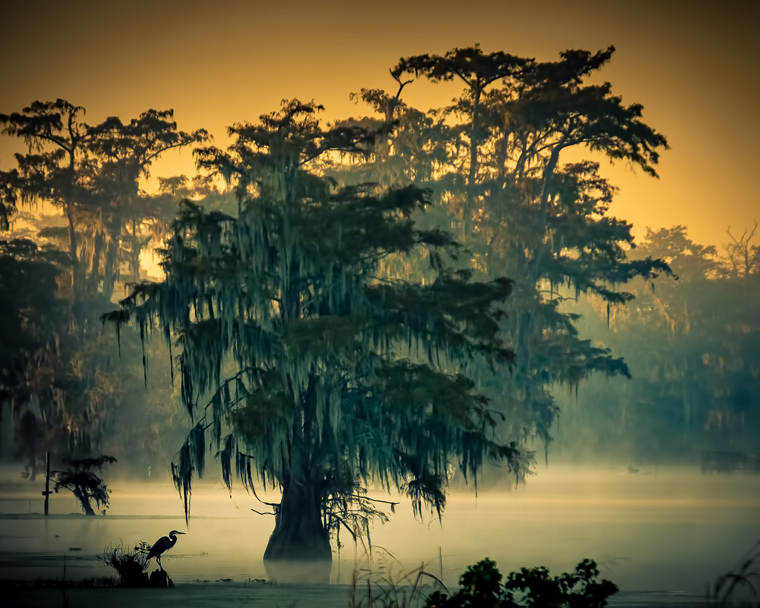 Stanley Saft - Lake Martin, Louisiana