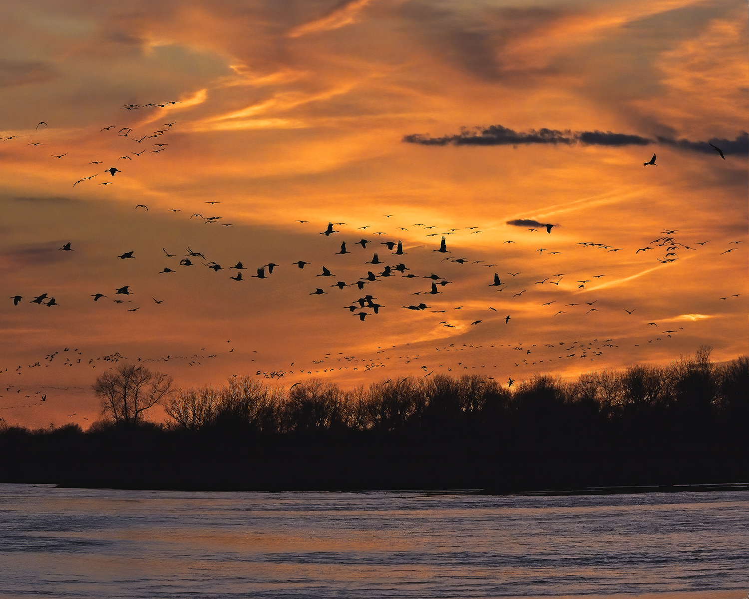 Jim Smigie - Sandhill Cranes at Twilight - Kearney, NE