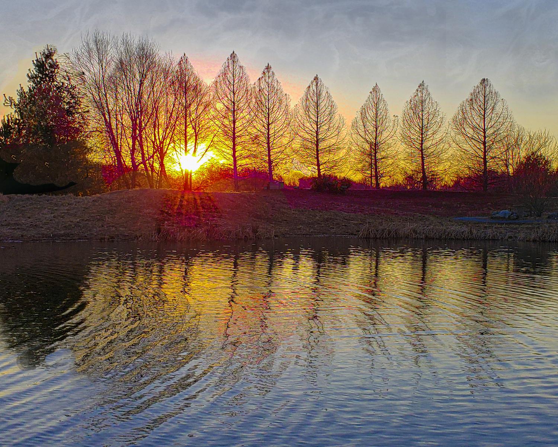 Margaret Walker - Maris Grove Sunset - Glen Mills, PA